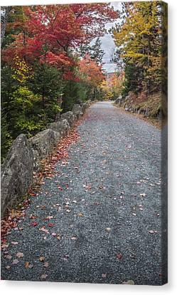 Maine Mountains Canvas Print - Walk Along by Jon Glaser