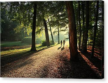 Walk Canvas Print by Annie Snel