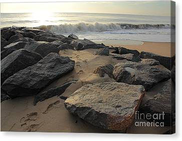 Canvas Print featuring the photograph Walk By The Shore by Everett Houser