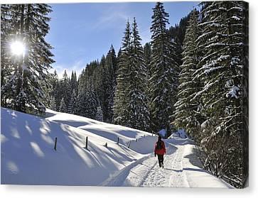 Vorarlberg Canvas Print - Walk In Sunny Winter Landscape by Matthias Hauser