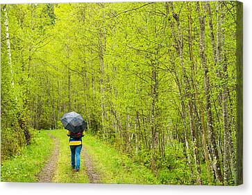 Walk In The Bright Green Forest In Early Spring Canvas Print by Matthias Hauser