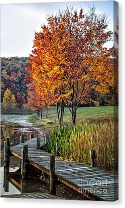 Walk Into Fall Canvas Print by Ronald Lutz