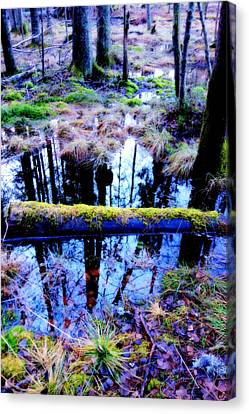 Walk Right Into The Nature's Fairytale With Me  Canvas Print by Hilde Widerberg
