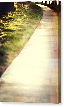 Walk Into The Sun Canvas Print