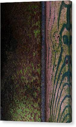 Walk The River Canvas Print by Odd Jeppesen