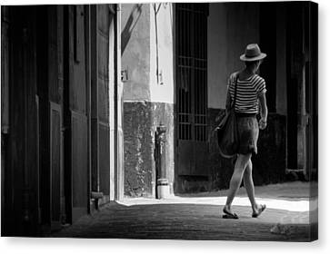 Walk This Way .. Canvas Print by A Rey