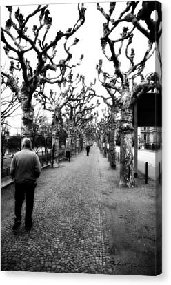 Canvas Print featuring the photograph Walk Under The Trees II by Robert Culver