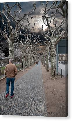 Canvas Print featuring the photograph Walk Under The Trees Iv by Robert Culver