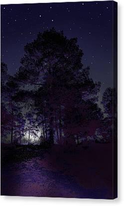 Walking At Night Canvas Print by Nina Fosdick