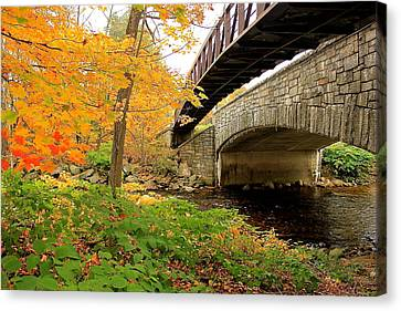 Canvas Print featuring the photograph Walking Bridge In Fall by Amazing Jules
