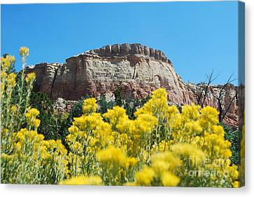 Canvas Print featuring the photograph Walking Ghost Ranch by William Wyckoff