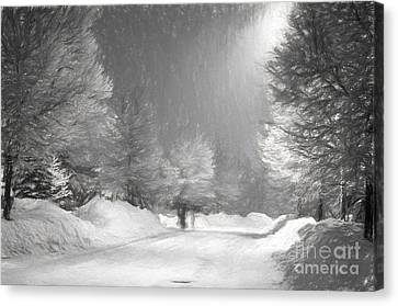 Winter Walk Canvas Print by Les Palenik