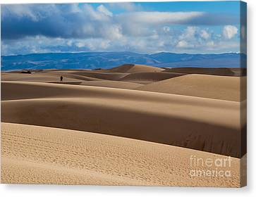 Walking In The Dunes Canvas Print