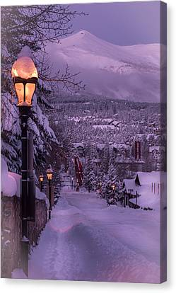 Walking In Winter Canvas Print