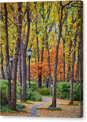 Walking Into Autumn Canvas Print by Laura George