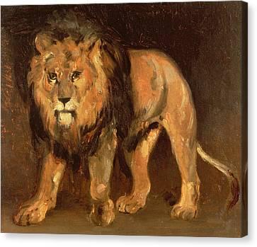 Walking Lion Canvas Print by Theodore Gericault