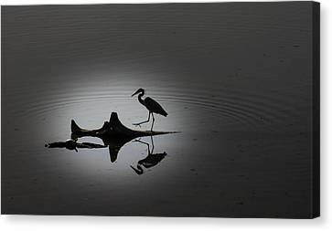 Walking On The Water Canvas Print by Menachem Ganon