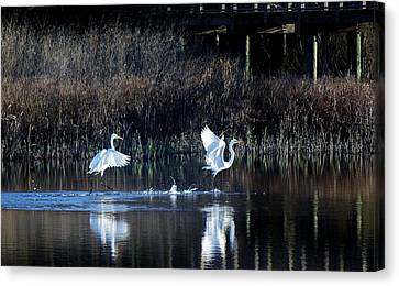 Walking On Water Canvas Print by Paulette Thomas