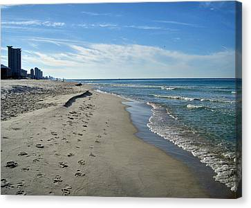 Walking The Beach Canvas Print by Sandy Keeton