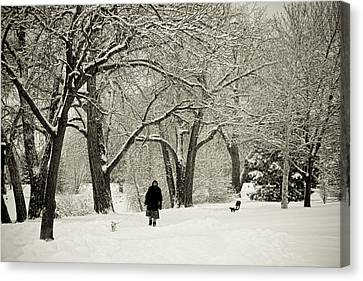 Walking The Dog In A Winter Wonderland Canvas Print by James BO  Insogna