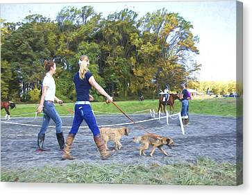 Walking The Dogs Canvas Print by Alice Gipson
