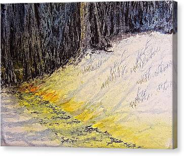 Walking The Shadowed Path Canvas Print