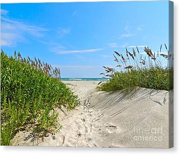 Walking Through The Sea Oats Canvas Print by Eve Spring