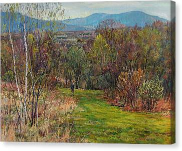 Walking Through The Woods In Spring Canvas Print