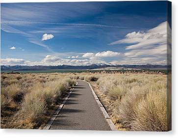 Walkway Leading To A Lake, Mono Lake Canvas Print by Panoramic Images