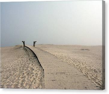 Walkway To Thoughts Canvas Print by Patricia Januszkiewicz