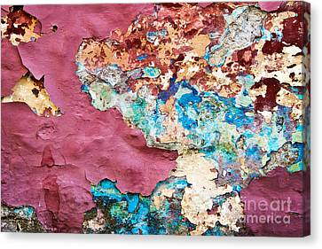 Wall 1 Canvas Print by Delphimages Photo Creations