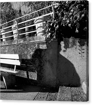 Wall Bench Shadows Stairs Canvas Print by Colleen Williams