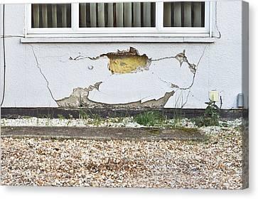 Wall Damage Canvas Print by Tom Gowanlock