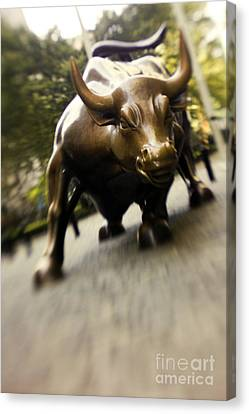 Wall Street Bull Canvas Print by Tony Cordoza