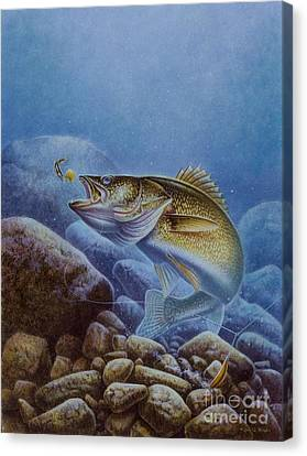 Walleye And Lindy Canvas Print by Jon Q Wright