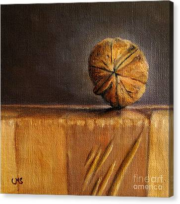 Walnut On Box Canvas Print