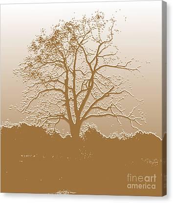 Walnut Tree Series Plaster Golden Canvas Print
