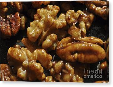 Walnuts Canvas Print
