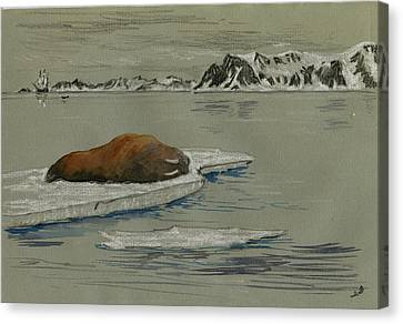 Walrus On The Iceberg Canvas Print by Juan  Bosco