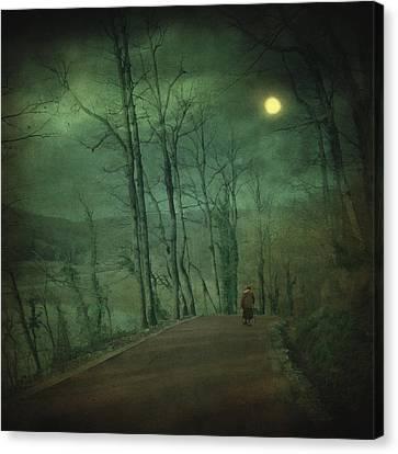 Wanderer Canvas Print by Taylan Apukovska