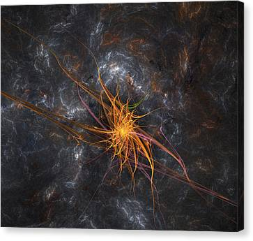 Wandering Star Canvas Print - Wandering In Space by Bijan Studio