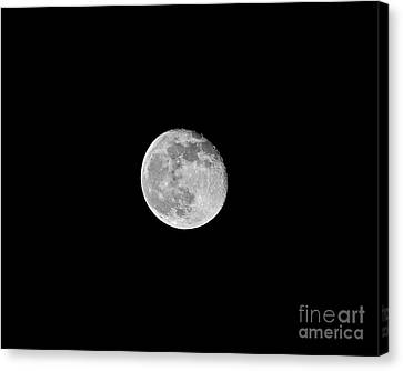 Waning Flower Moon Canvas Print by Al Powell Photography USA