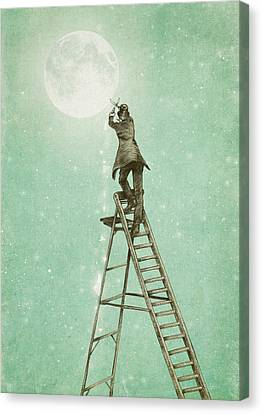 Waning Moon Canvas Print by Eric Fan