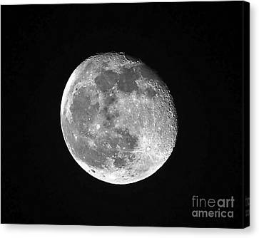 Waning Pink Moon Canvas Print by Al Powell Photography USA