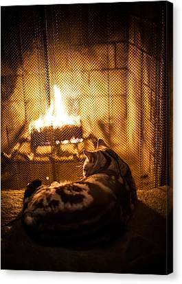 Warm Kitty Canvas Print
