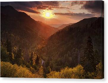 Warm Light In The Smokies Canvas Print by Andrew Soundarajan