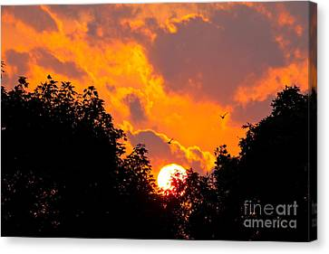 Canvas Print featuring the photograph Warm Summer Sunset by Jay Nodianos