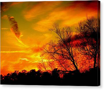 Warm Winter Sunset  Canvas Print by Walter  Holland