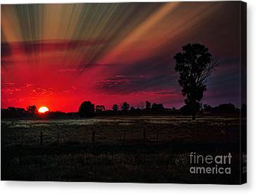 Warmth Of A Country Sunset Canvas Print by Kaye Menner