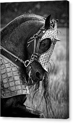 Warrior Horse Canvas Print by Wes and Dotty Weber